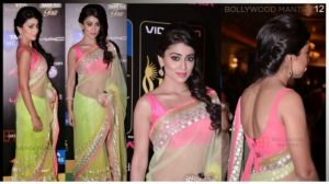 Shriya Saran Designer Sarees Collection 2018
